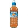 Peach Iced Tea 0,5 l